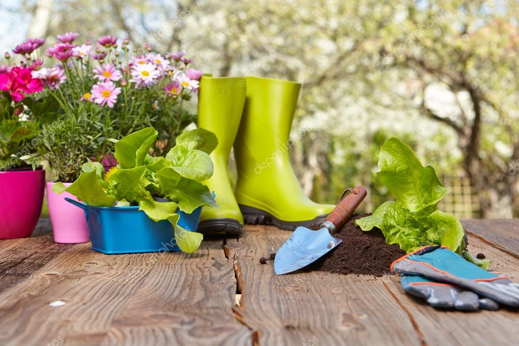 gardening tools on wood table