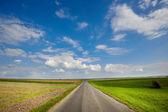 Asfaltová silnice přes zelené louce