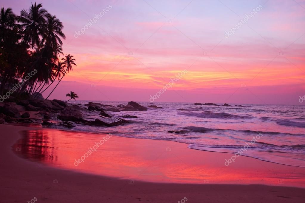 Sunset  and Tropical beach