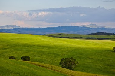 Beautiful green countryside of San Quirico dOrcia, Tuscany, Italy stock vector