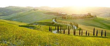 Landscape of Tuscany region