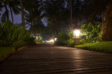 Wooden pathway in a tropical resort