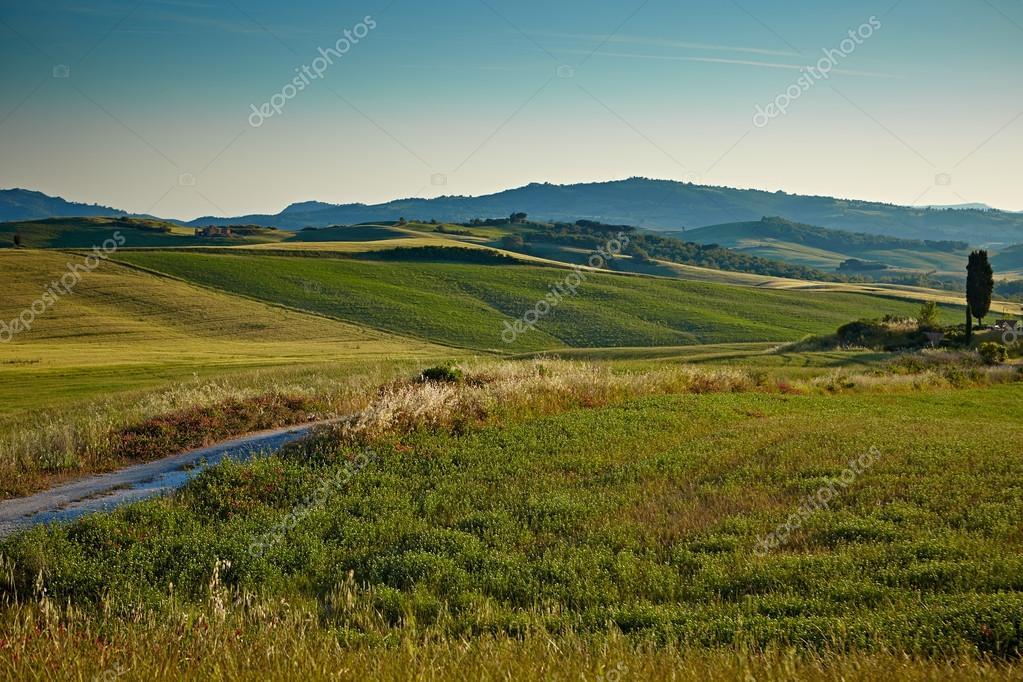 Фотообои Landscape in Tuscany at sunset