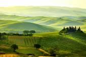 zöld toszkán dombok