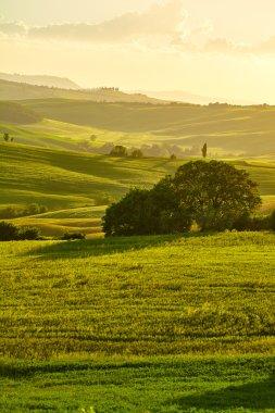 Tuscany hills, Italy