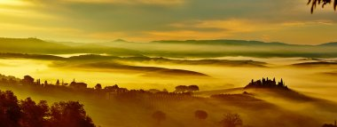 Scenic Tuscany landscape panorama with rolling hills and valleys in golden morning light. stock vector