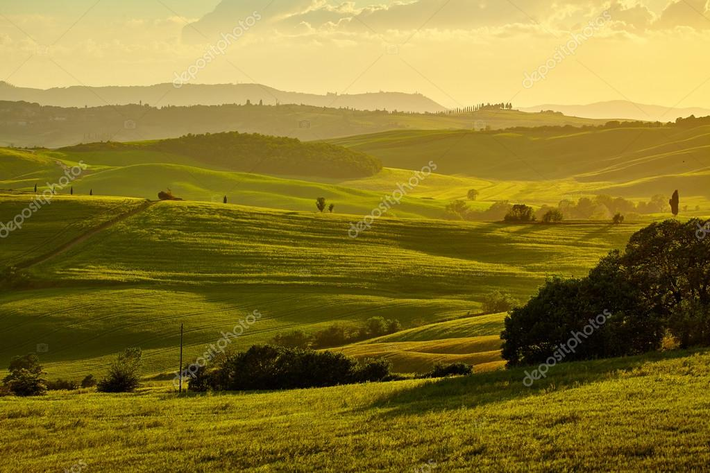 Фотообои Tuscany, rural sunset landscape.