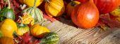 ripe harvest on table
