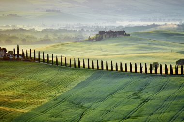 countryside in Tuscany province on sunrise