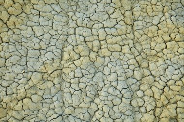 detail of a cracked earth, backround