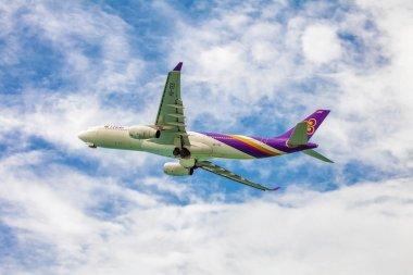 Thai Airways plane in sky
