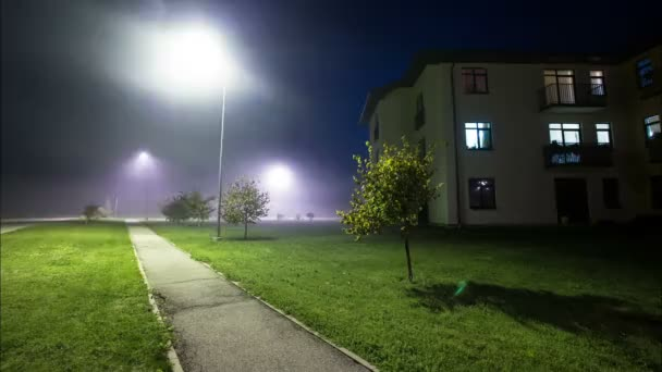 Esche bei Nacht mit Nebel