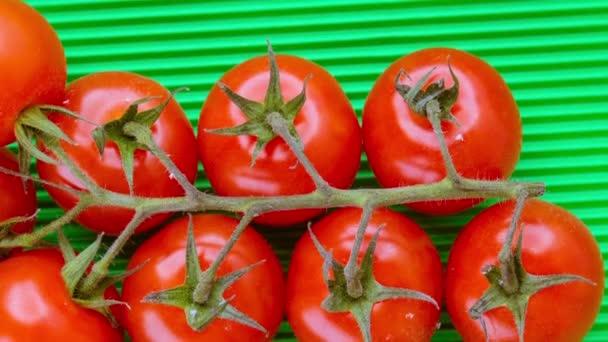 Zweige roter Tomaten