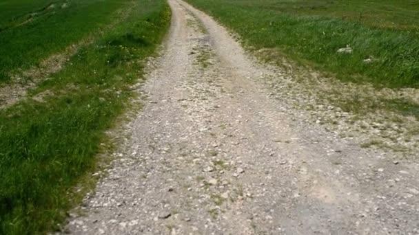 Jarabina v Prešově kraji na Slovensku