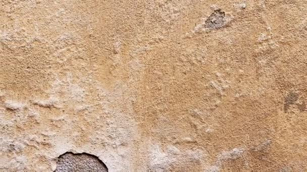 Wall with cracked plaster and dumps
