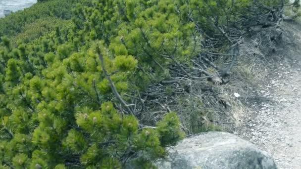 Lomnickým štítem ve Vysokých Tatrách na Slovensku