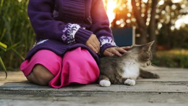 Kis lány simogató macska