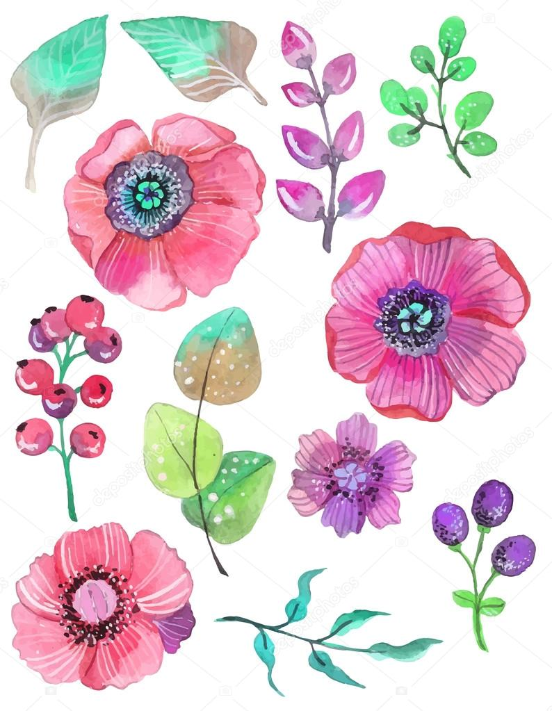 Colorful floral collection with leaves and flowers, watercolor i