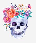 Fiori dellacquerello e priorità bassa del cranio