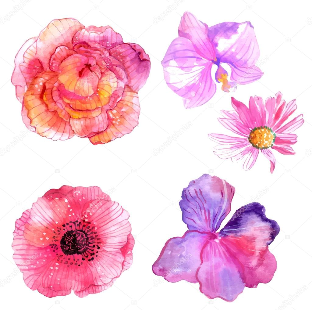 Beautiful Watercolor flower set