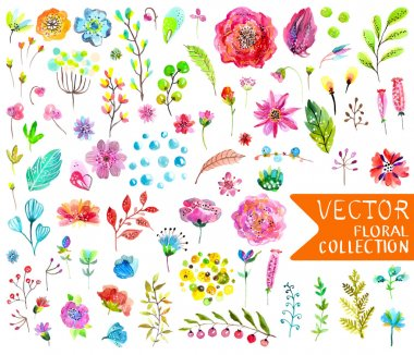 Watercolor flowers collection for different design over white clip art vector