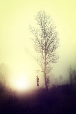 terrible mystery story - hanged on a tree