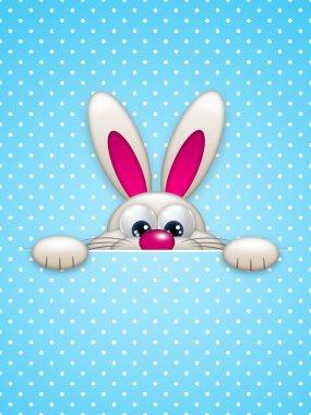easter bunny hiding in pocket