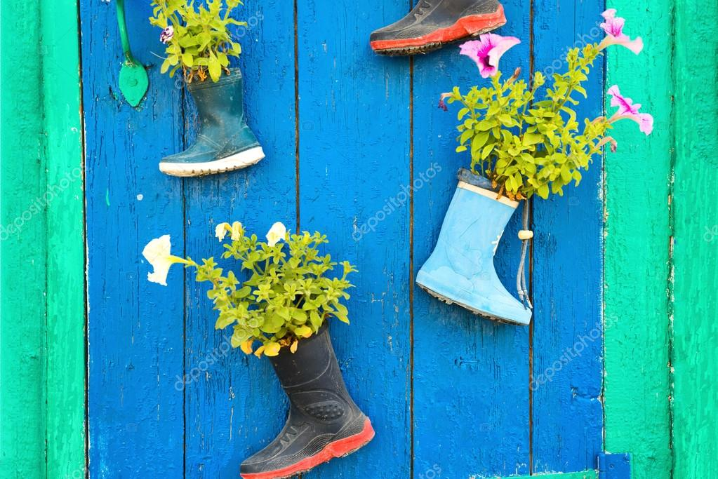 Vecchi stivali di gomma con fiori che sbocciano foto for Fiori che sbocciano