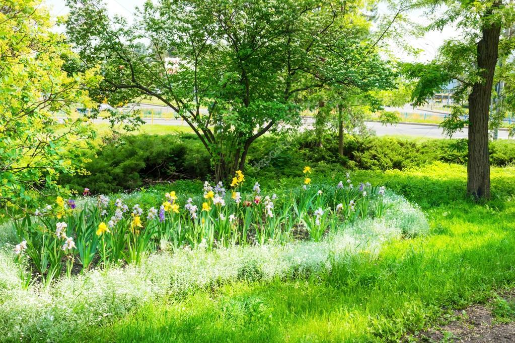 Green urban park