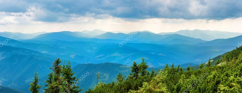 Фотообои Blue mountains covered with green forest