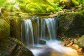 Fotografie vodopád v zeleném lese