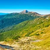 Cima della montagna nella valle verde