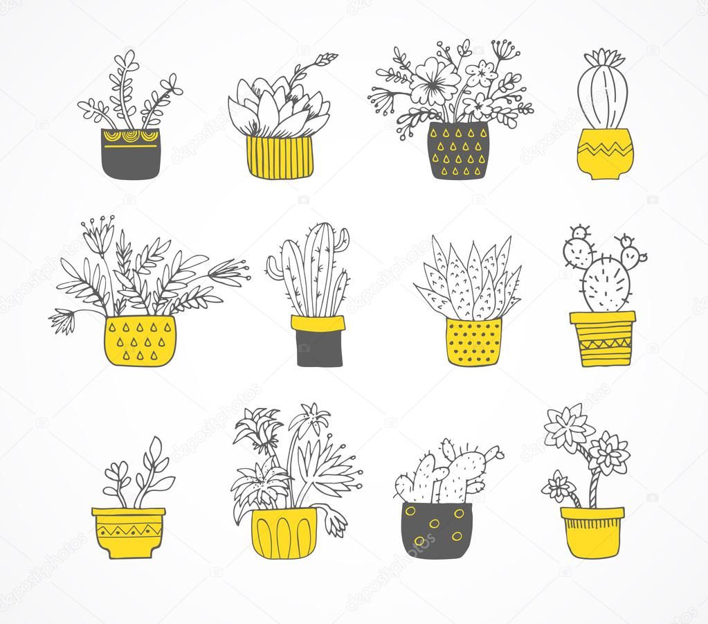 Cute hand drawn cactus set