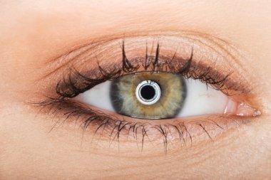 Macro image of female eye