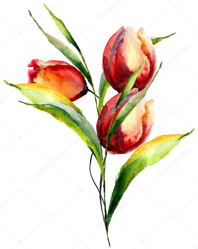Stylized Tulips flowers
