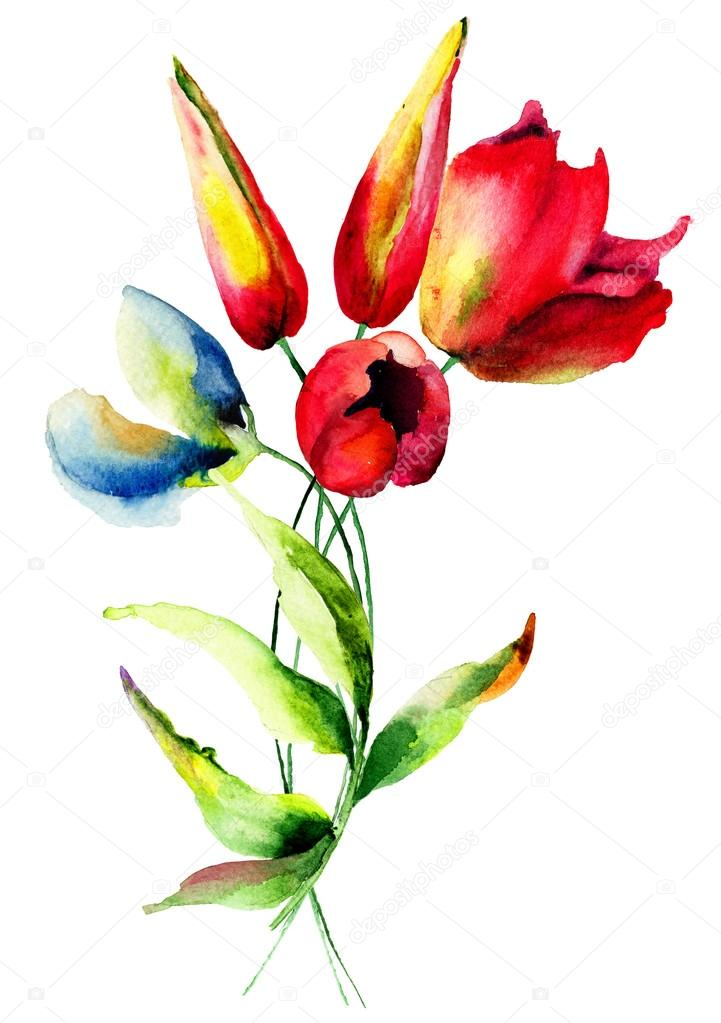 Sweet pea and Tulips flowers