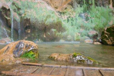 beautiful secene on waterfall