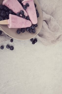 yogurt ice creams with blueberry