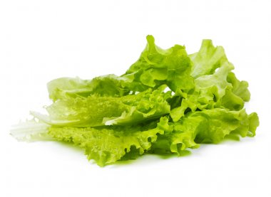 Lettuce leaves close up