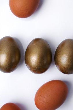 Rare golden eggs