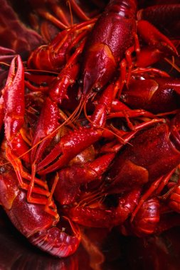 Delicious crayfish on the table
