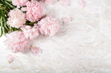 Beautiful peony on the table