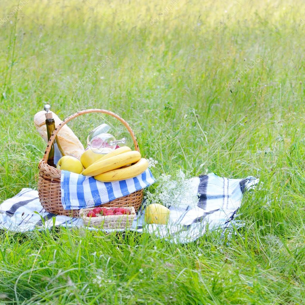 Picnic basket on grass