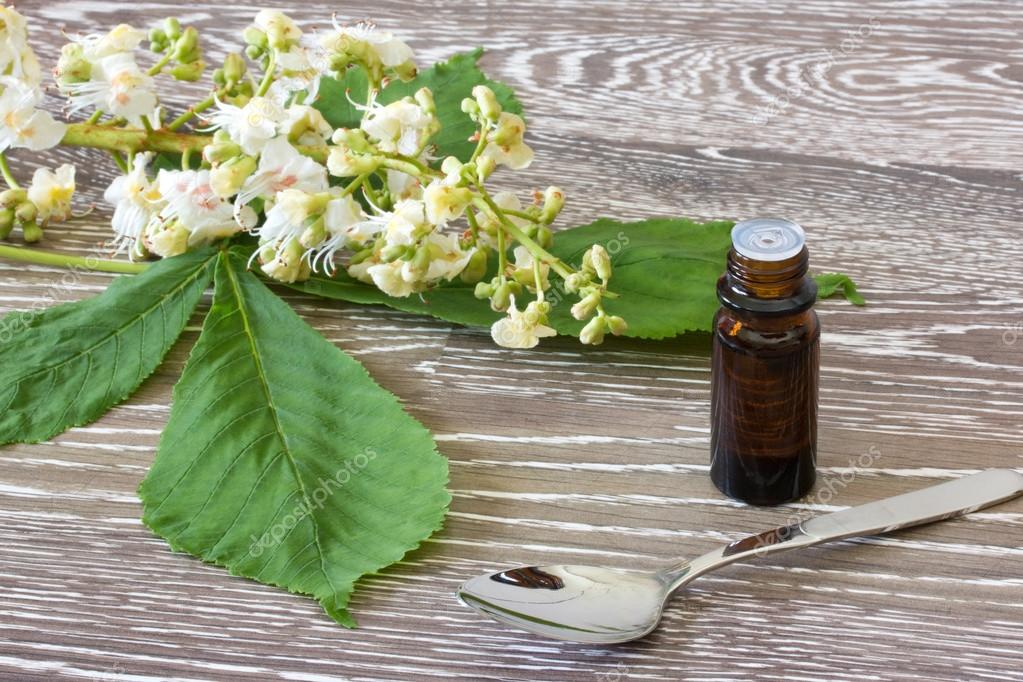 Bach flower remedies of white chestnut stock photo saphira 75204411 bach flower remedies of white chestnut stock photo mightylinksfo