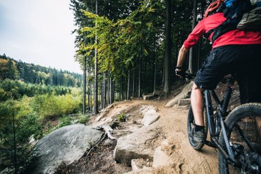 Mountain biker cycling in autumn forest