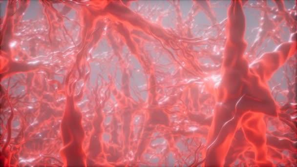 Utazás egy neuron sejthálózaton keresztül az agyban