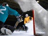 Fotografie hokejový brankář