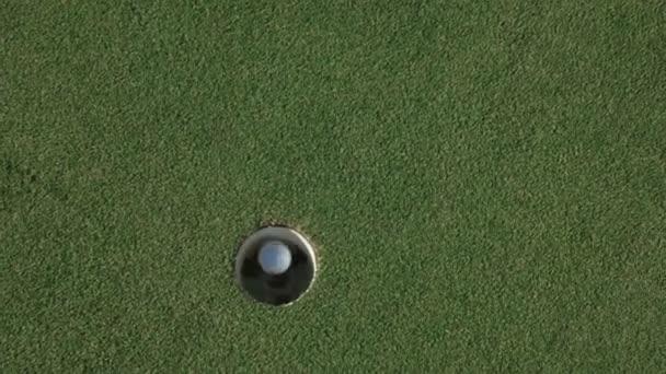 Golf hraje s myší se míč od díry