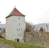 Torre di cacciatori