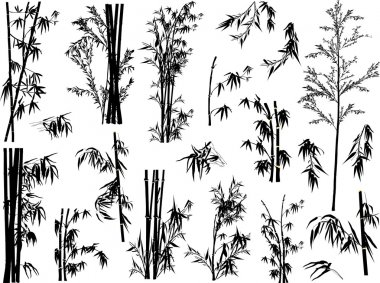 bamboo plant silhouettes